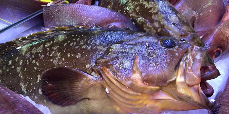 Comer Pescado en Fuengirola